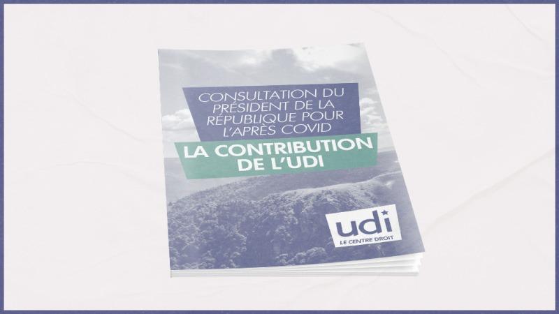 La contribution UDI à la consultation du Président de la République